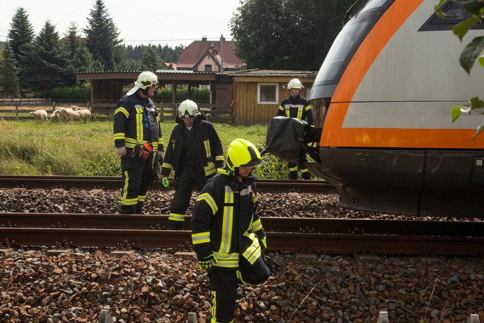 Ein Trilex-Zug hat an diesem Sonntag in Großharthau zwei Schafe überfahren.