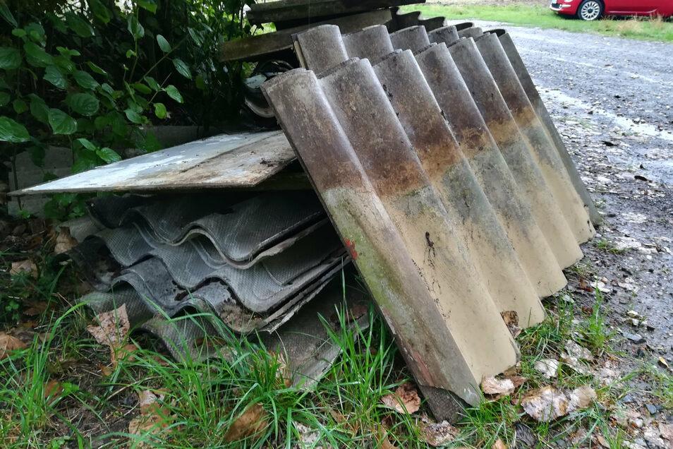 ISchon bisher haben die Leisniger auf Dinge wie diese illegalen Müllablagerungen am Hasenberg hingewiesen, wenn sie diese bei Spaziergängen oder Gassi-Runden entdeckt hatten.