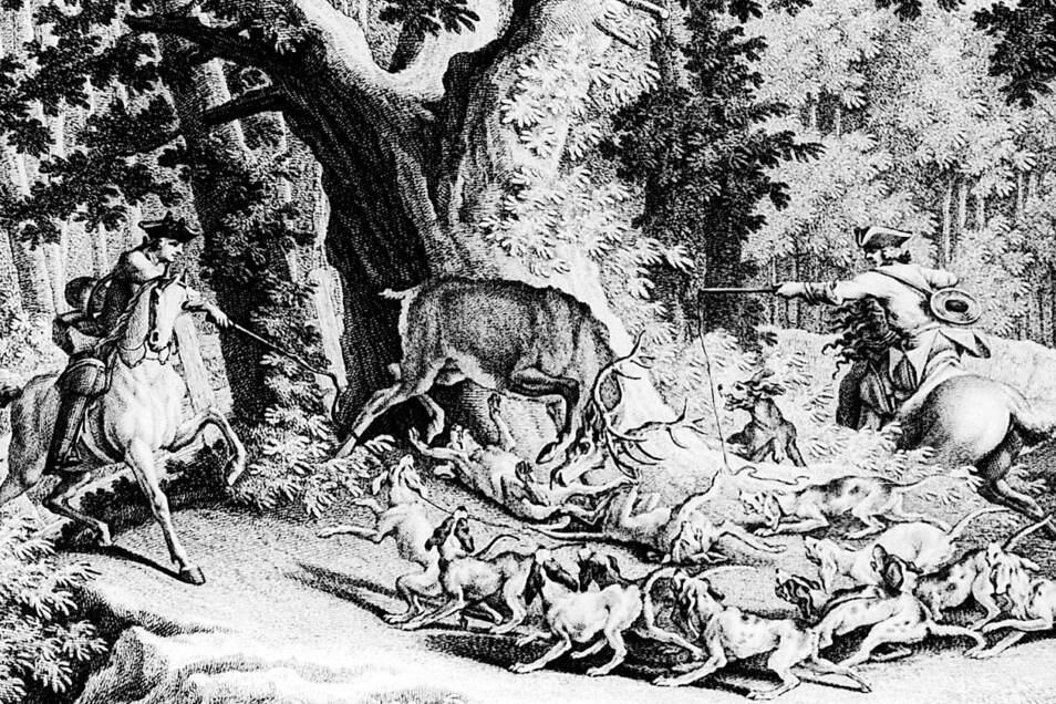 Hirschjagd im 18. Jahrhundert. Ausschnitt aus einem Kupferstich von Riedinger. Jagdgeschehen wie es auch für den Poisen- und den Tharandter Wald typisch war.