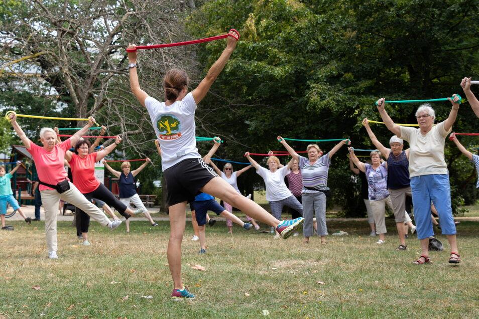 """Archivbild: Sport für Senioren ist einer von vielen Kursen, die bei der Aktion """"Fit im Park"""" angeboten werden."""