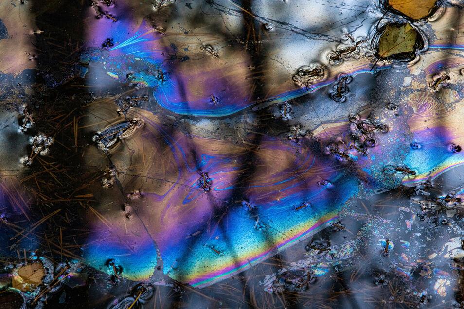 Was aussieht wie ein Ölfilm ist in Wirklichkeit ein äußerst zerbrechlicher Teppich aus Mikroorganismen auf saurem und nährstoffarmen Wasser.