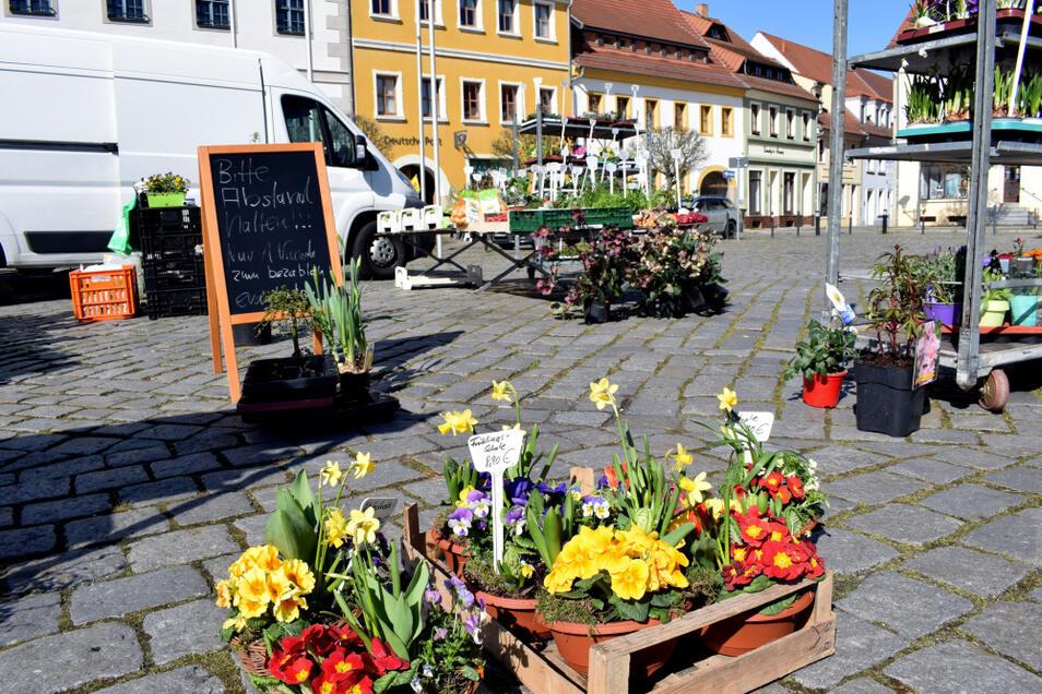 In Hoyerswerda ist der Wochenmarkt in der Altstadt traditionell schwächer bestückt als der in der Neustadt.