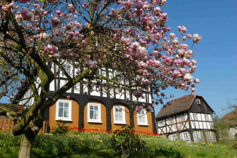 Ein Dittelsdorfer Markenzeichen sind die vielen gut erhaltenen Umgebindehäuser.