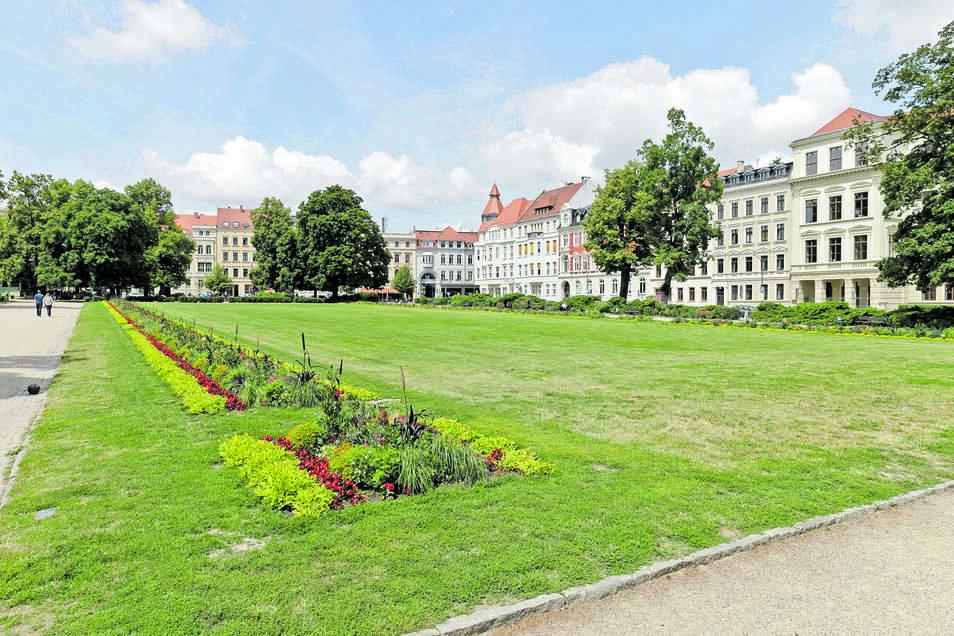 Der Wilhelmsplatz in Görlitz. Etwas ramponiert sieht der Rasen schon aus. Das kann aber auch am Wetter liegen.