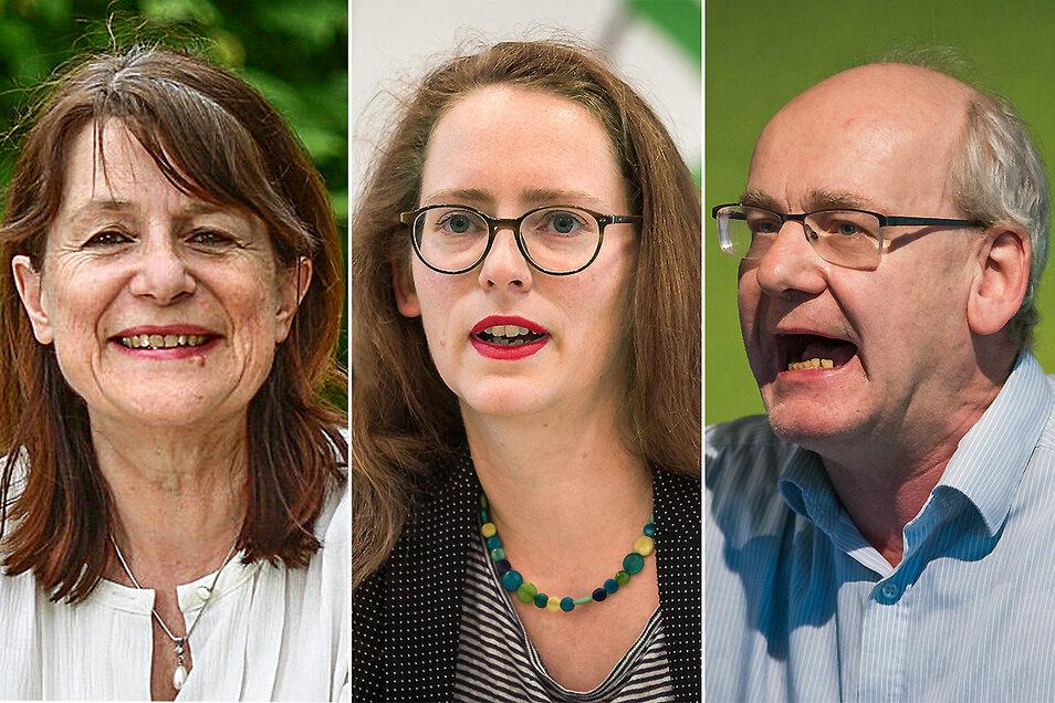 Protagonisten im internen Grünen-Streit: Fraktionschefin Christiane Filius-Jehne, Parteichefin Susanne Krause und Stadtrat Johannes Lichdi.