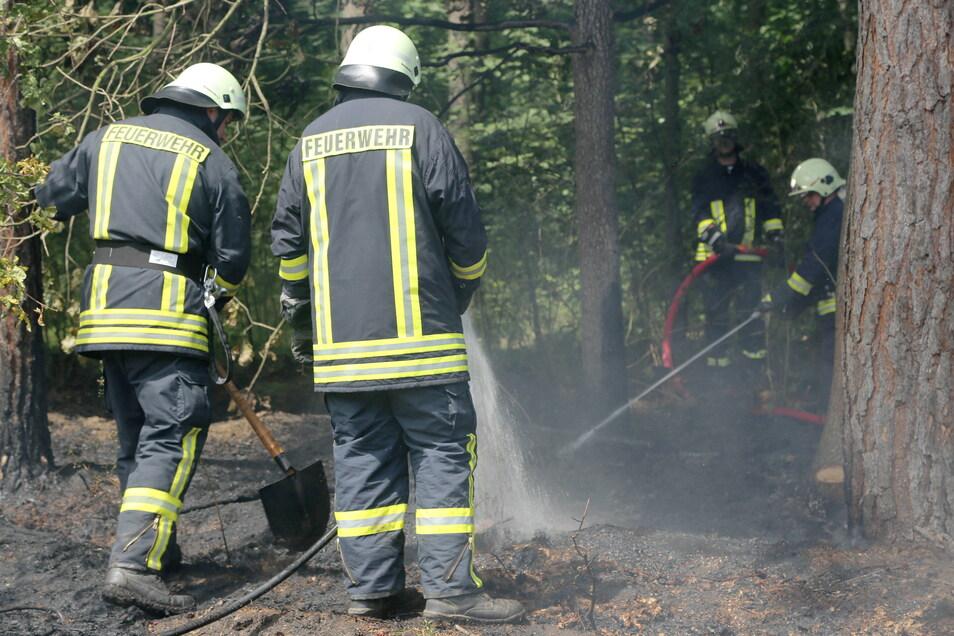 Im Landkreis Görlitz hat die Waldbrandsaison begonnen. Am vergangenen Sonntag gab es bei Spreehammer nach mehrwöchiger Pause den zweiten in diesem Jahr.