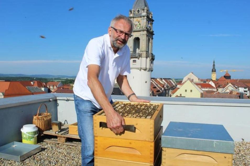 Roland Barthel bei seinen Bienenvölkern auf dem Best Western Plus Hotel in Bautzen. Einmal die Woche schaut der Imker hier nach dem Rechten.