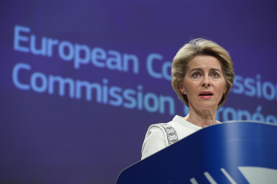 Ursula von der Leyen hat sich als Präsidentin der Europäischen Kommission für ein ambitioniertes EU-Klimaziel stark gemacht.
