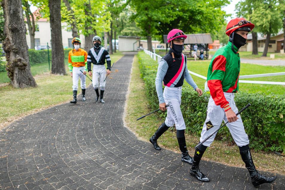 Die Jockeys halten mehr oder weniger Abstand auf dem Weg zum Führring.