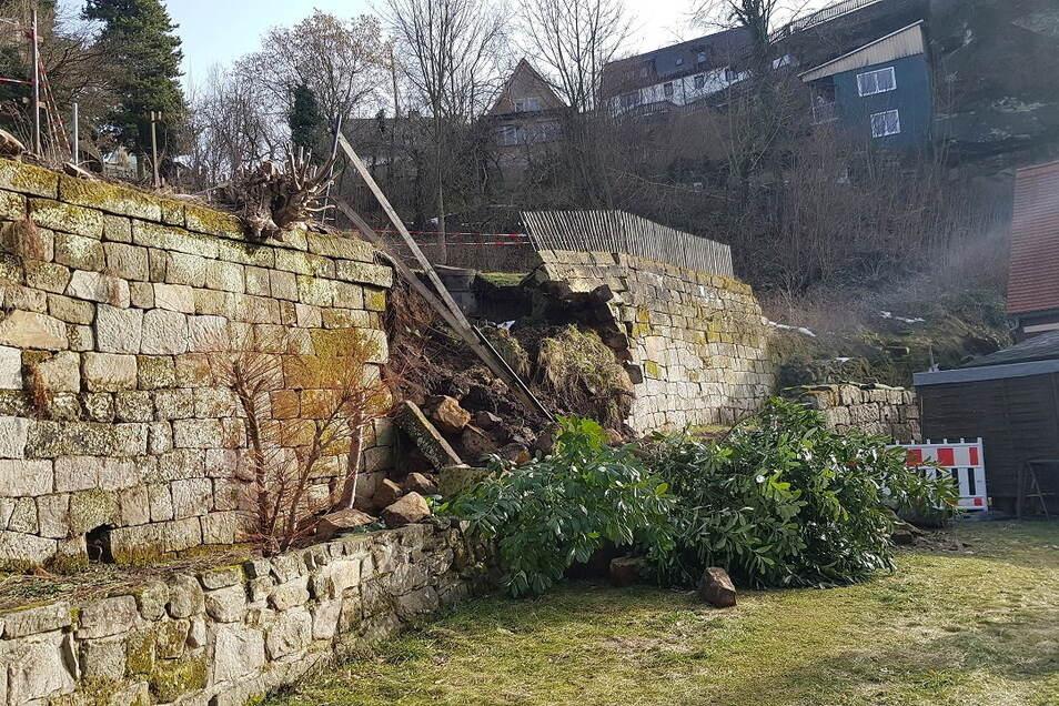 Dieser Teil der Mauer ist samt Bepflanzung eingestürzt.