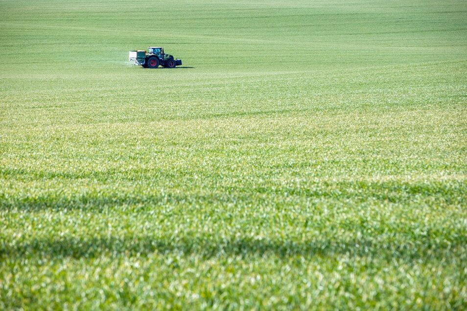 Mikroplastik wird einer Studie zufolge größtenteils durch die Landwirtschaft freigesetzt.