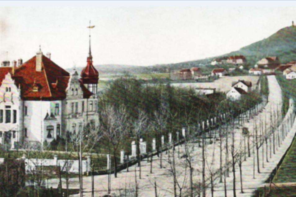 Zur Zeit der Erbauung des Forellhauses wurde die Promenadenstraße noch auf beiden Seiten mit doppelten Baumreihen angelegt.