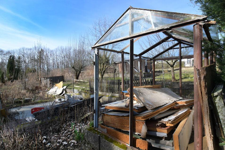 Eigentlich dürfte dieses Gewächshaus hier nicht mehr stehen, nachdem der Pächter den Garten aufgegeben hat. Aber wie die Lauben wurden sie oft nicht abgerissen.
