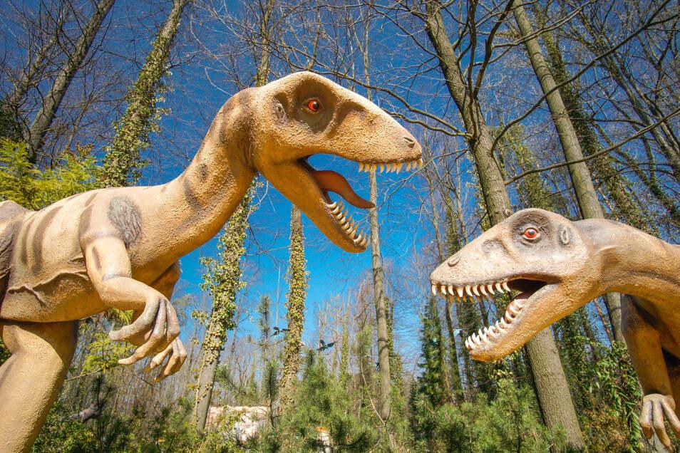 Bei schönstem Ausflugswetter stehen diese beiden Dinosaurier-Plastiken einsam im Saurierpark Kleinwelka. Eigentlich sollte die Anlage nach der Winterpause am 1. April wieder für Besucher öffnen. Doch aufgrund der Corona-Krise bleibt sie vorerst geschlossen.