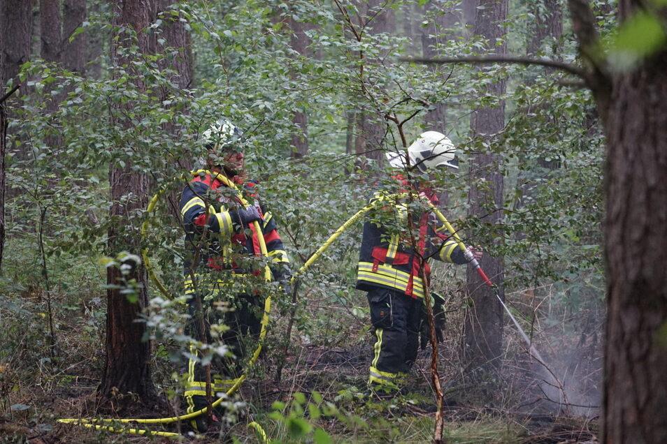 In einem Wald zwischen Sohland und Neudorf ist es am Sonntagnachmittag zu einem Brand gekommen. Selbstentzündung als Ursache schließt die Feuerwehr aus.
