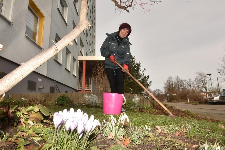 Ute Hempel hat für die Frühjahrsblüher vor der Schweitzerstraße 11 gesorgt und pflegt sie auch.