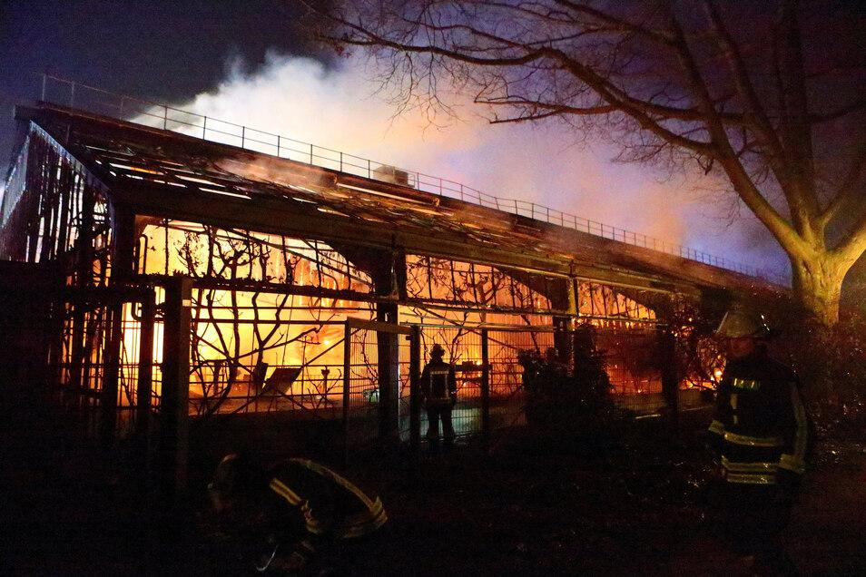 Das Affenhaus im Krefelder Zoo brannte in der Silvesternacht komplett aus.