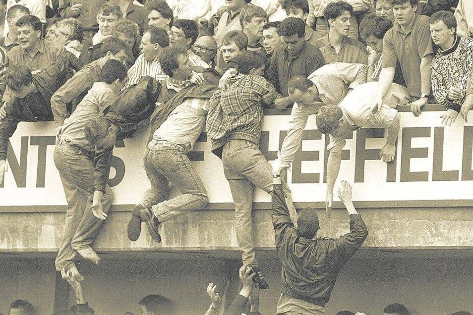 Unzählige Dramen spielen sich im Hillsborough-Stadion von Sheffield ab. Von den überfüllten unteren Traversen versuchen Zuschauer, sich auf den Rang hochzuziehen. Foto: dpa