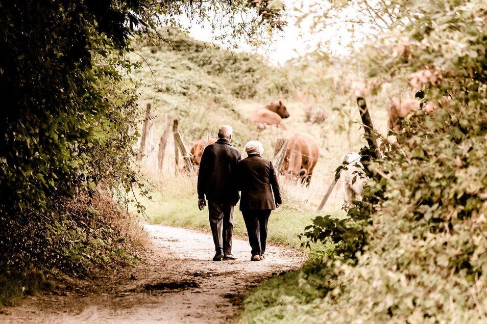 Spaziergänge mit Alzheimer-Patienten erfordern eine klare Struktur und sollten immer zu einer fester Zeit stattfinden.