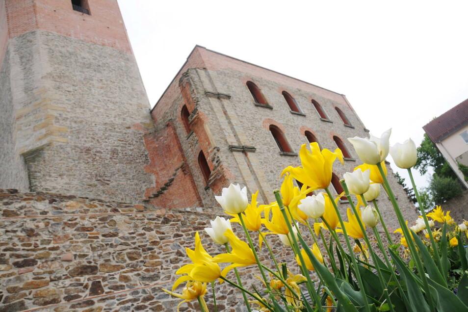 Das Kulturschloss mit Frühlingsblühern.