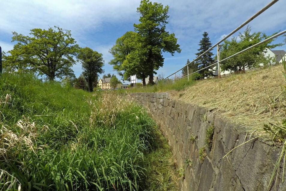 Der Mortelbach in Grünlichtenberg ist an einigen Stellen zugewachsen. Für die Gewässerpflege soll nun doch der Bauhof der Gemeinde Kriebstein herangezogen werden.