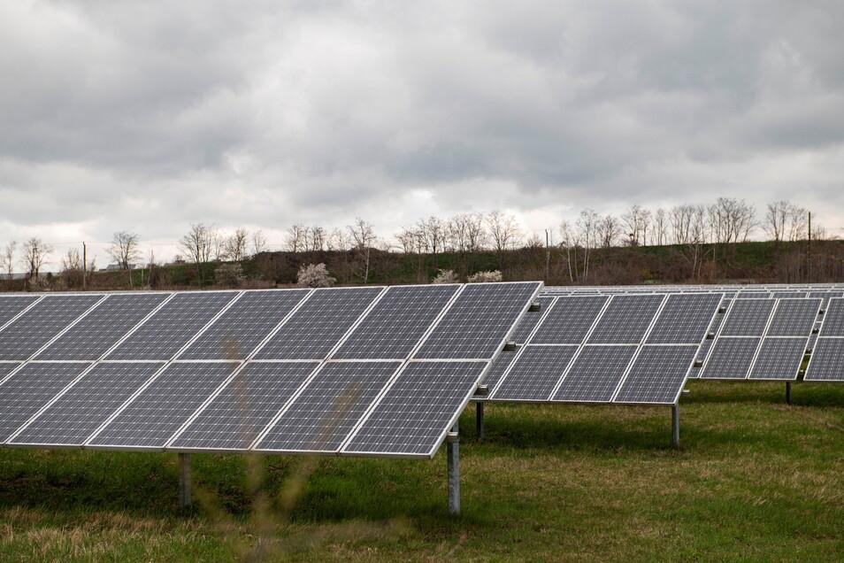 So würde es aussehen: Die Solaranlage am Sportpark Großenhain gibt einen kleinen Vorgeschmack auf die Pläne im Ortsteil Walda. Allerdings: Die Dimension würde eine weitaus größere sein.