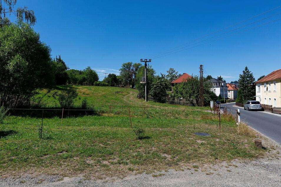 Auf diesem Hang neben einem Biotop plant ein Investor, Familien in Einfamilienhäusern anzusiedeln.