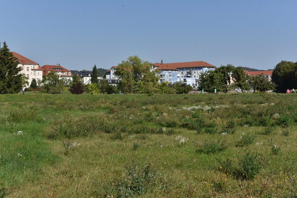 Noch Wiese, bald Wohnhaus-Baustelle: An der Leßkestraße entsteht ein Wohn- und Geschäftskomplex.