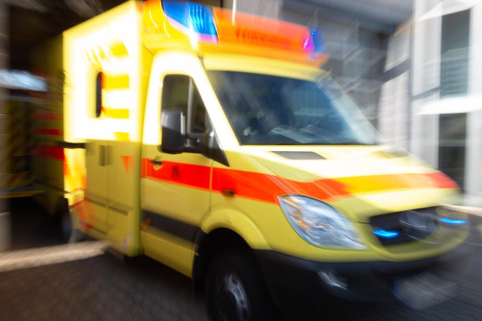 Zwei Personen verletzten sich, als sie mit ihrem Kanu in der Elbe kenterten.