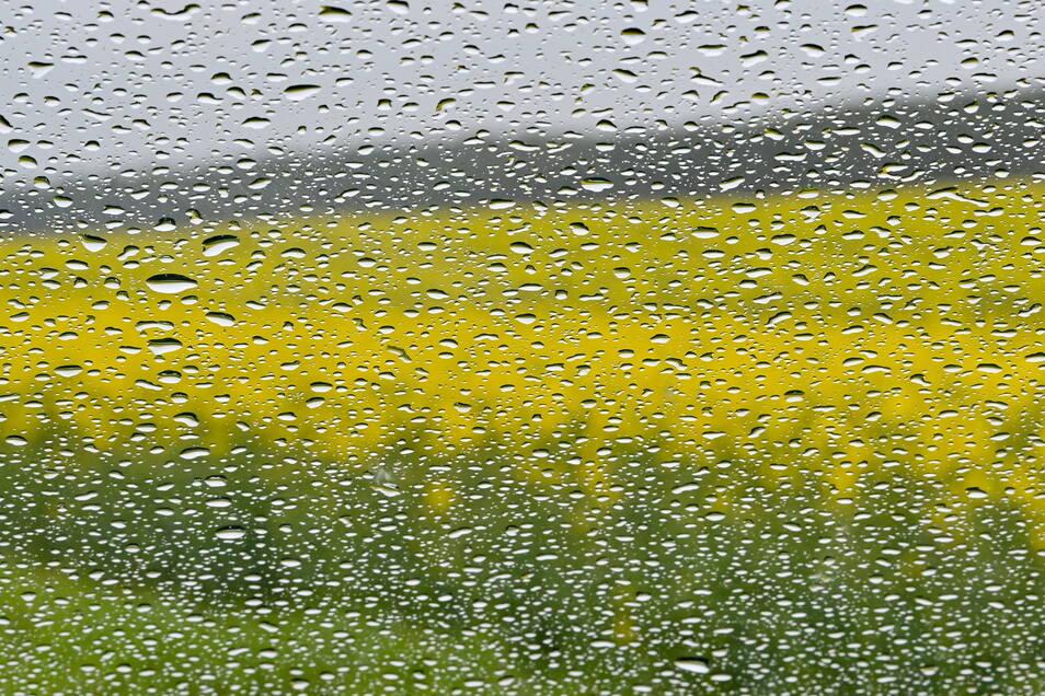 Teile Sachsens müssen sich am Dienstagabend auf starke Regenfälle einstellen.