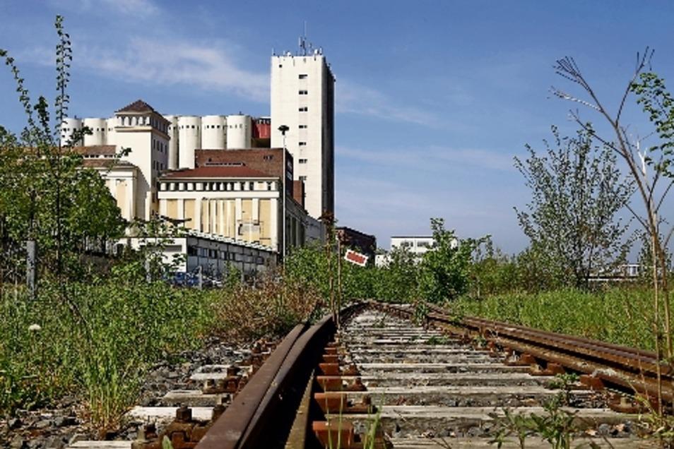 Für Züge ist hier schon länger Schluss. Dagegen sollen Elberadweg-Nutzer bald am Muskator durchkommen.