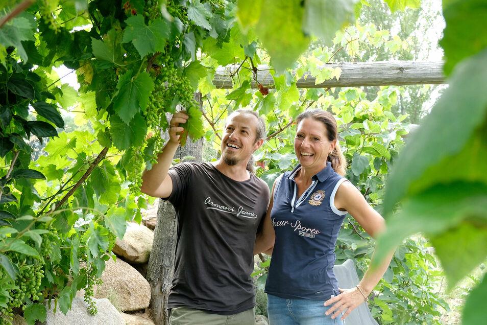 Ihr Garten ist ihr Paradies. Die Kühnemunds bauen auch Wein an.