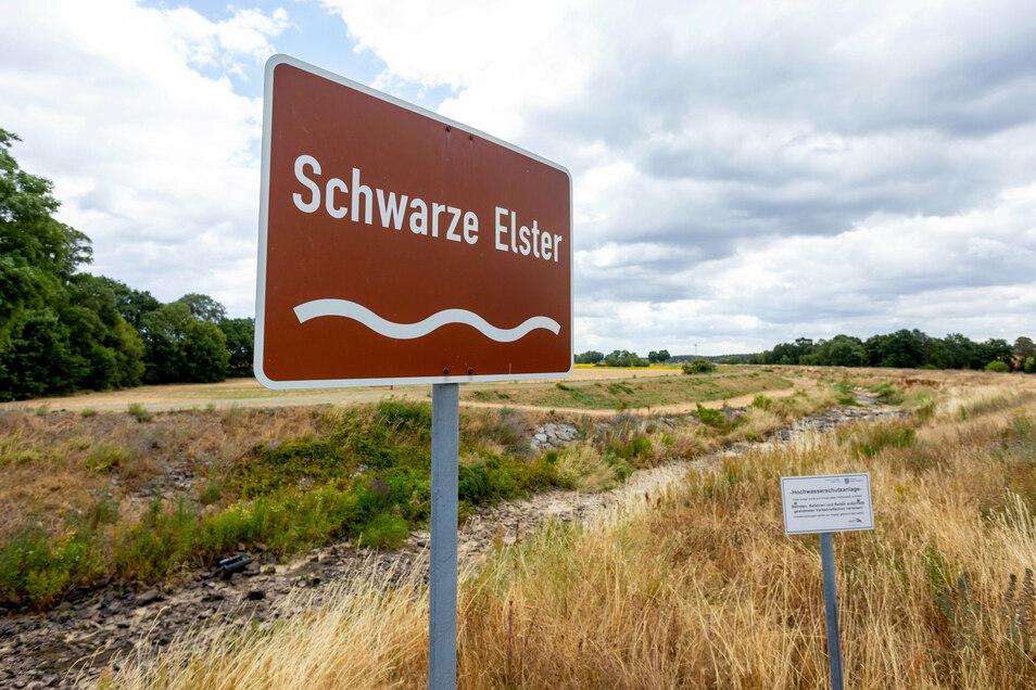 Die Schwarze Elstern, hier bei Senftenberg, führt derzeit zwischen Hoyerswerda und dem Süden Brandenburgs kein Wasser.