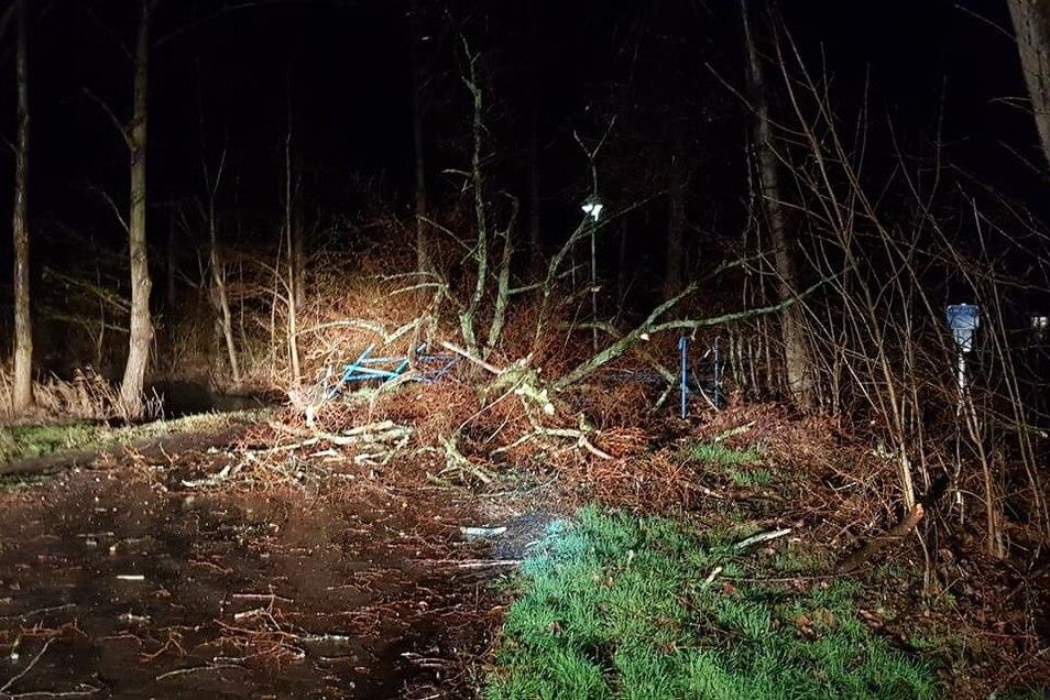 Dieses FB-Foto von der Seite Feuerwehren im Kreis Meißen zeigt einen der vielen Holzschäden, die Sturm Sabine angerichtet hat.