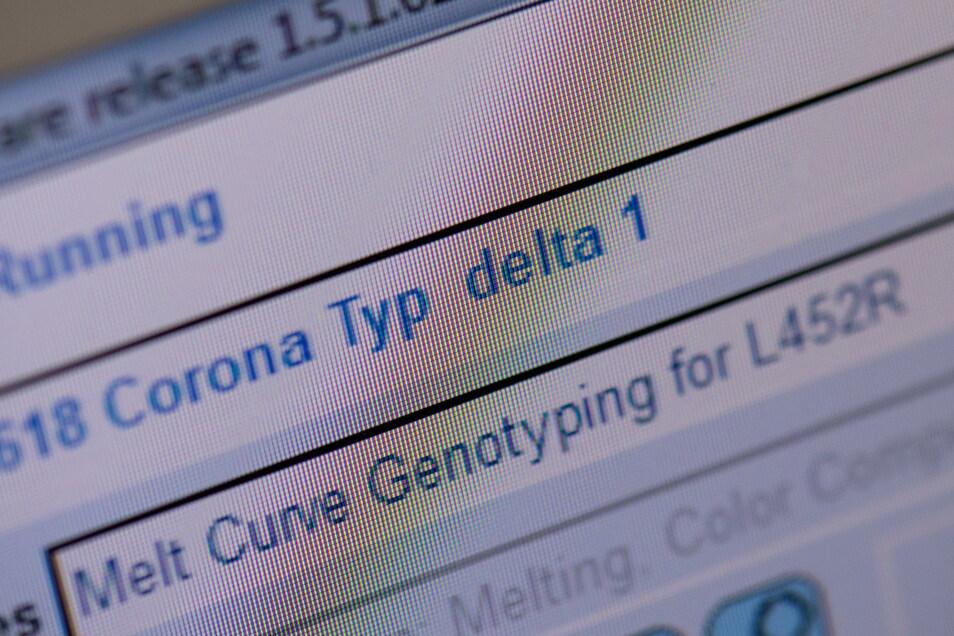 Auf die ·Delta-Variante· des Corona-Virus weist eine Zeile auf einem Monitor im Labor der Firma ·Bioscientia· hin. Bioscientia gehört zu den größten Corona-Test-Laboren Deutschlands.