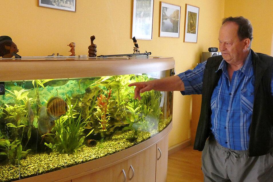 Auch im Ruhestand lebt Werner Jorga seine Tierliebe weiter aus und hält Kontakt. Sei das nun bei ihm zuhause oder im Zoo.