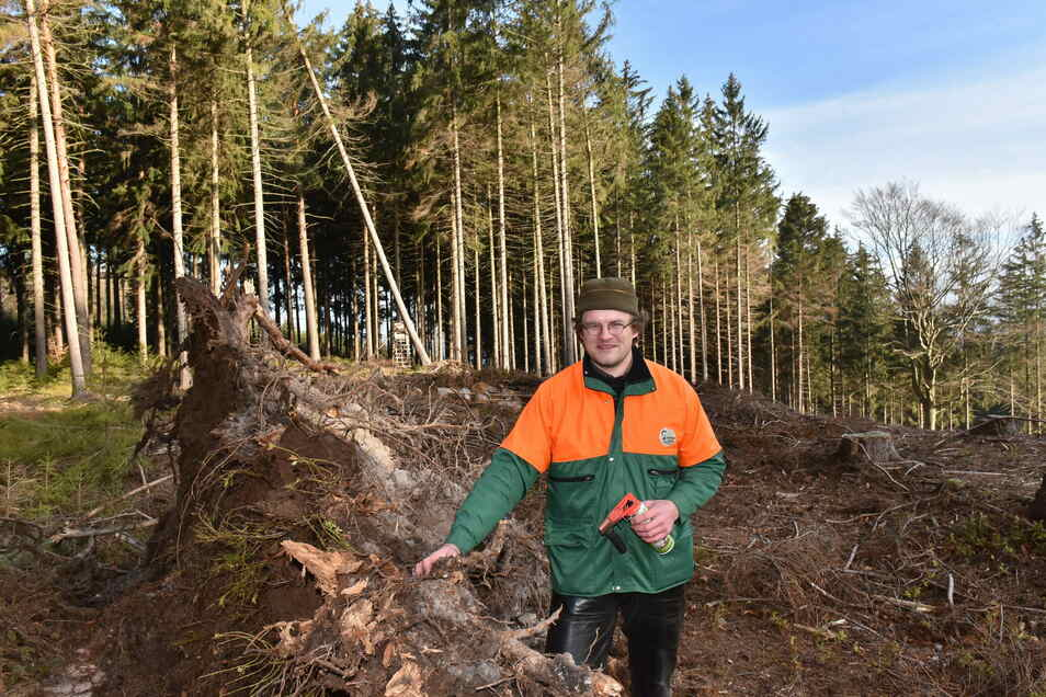 Wachsam bleiben: Thomas Schuchardt, Student der Holzwissenschaft, erfasst umgeworfene und vom Käfer befallene Bäume bei Cunnersdorf.