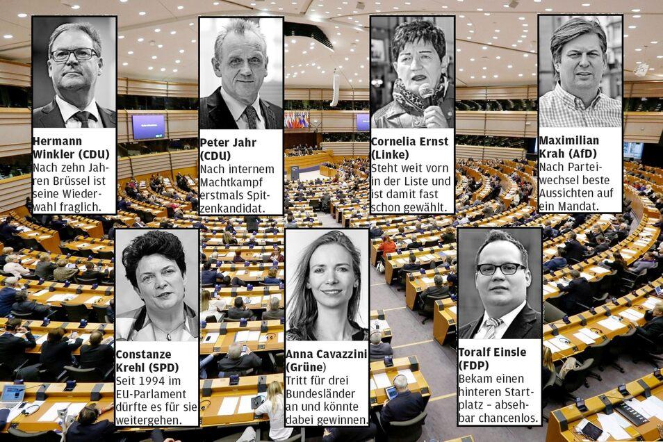 Ziehen diese Sachsen ins EU-Parlament? Die Chancen sind bei den Bewerbern unterschiedlich hoch.