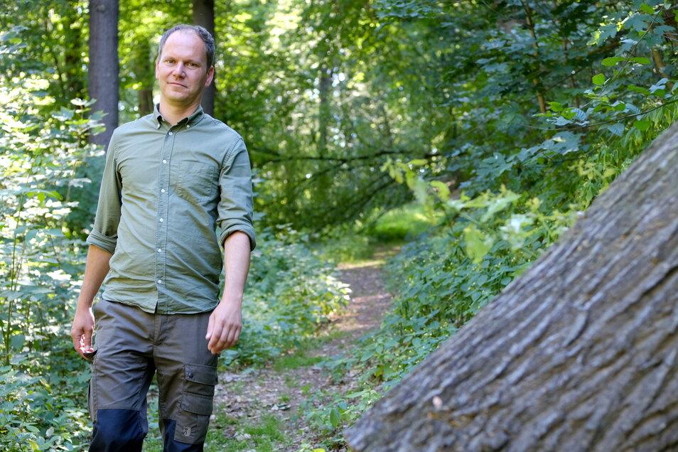 Stellt dem Meißner Wald ein gutes Zeugnis aus: Förster Thomas Nikol sieht eine gute Basis, der jedoch geholfen werden muss, sich zu verjüngen und anzupassen.