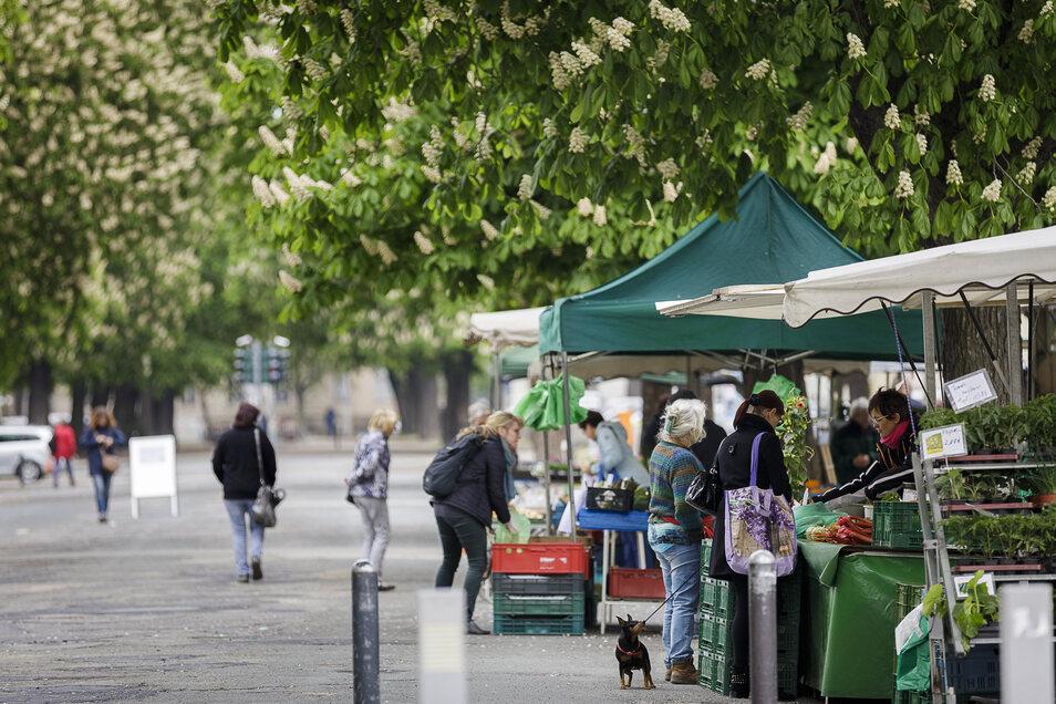 Der Wochenmarkt an der Elisabethstraße musste wegen Corona reduziert werden, die Stände in der Mitte sind weggefallen. Das finden viele Händler und Besucher gut, der Marktbetreiber auch.