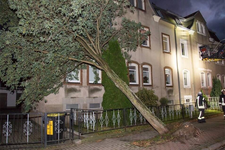 Zum Glück entstand an dem Haus in der Belmsdorfer Straße kein Schaden.