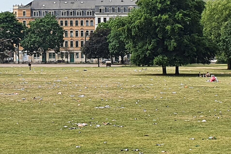 Am Morgen nach der großen Sause: Die Wiesen im Alaunpark sind vermüllt, zerbrochene Flaschen liegen herum, ebenso wie die letzten Partygäste.