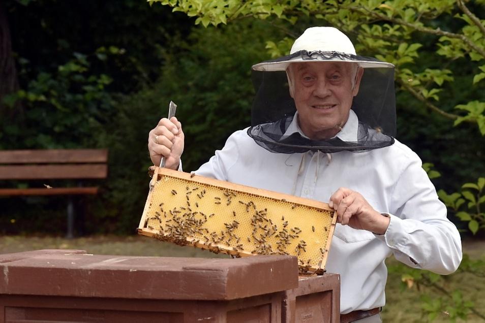 Imker Dieter Adam schaut jeden Mittwoch nach den Bienen im Zoo Hoyerswerda.