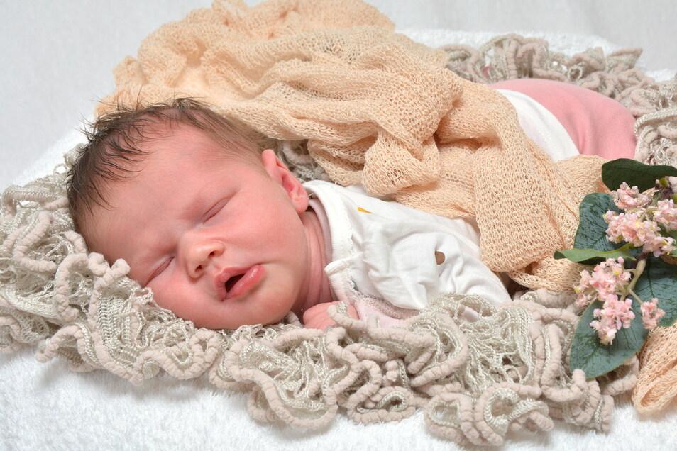 Ella, geboren am 21. März, Geburtsort: Städtisches Klinikum Dresden, Gewicht: 3.270 Gramm, Größe: 47 Zentimeter, Eltern: Susann und Holger Hippe, Wohnort: Dresden