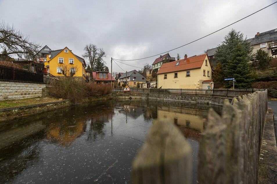 Dorfteich in Altendorf: Dort, wo jetzt Sträucher wuchern, soll ein Zugang zum Wasser entstehen.