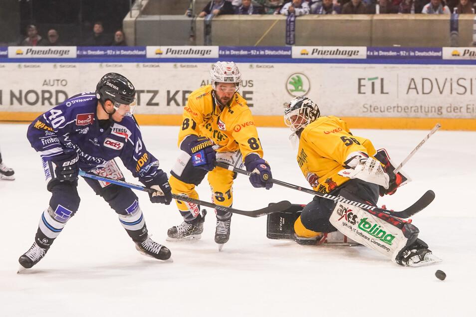 Sowohl Eislöwen als auch Lausitzer Füchse wissen, gegen wen sie die Saison starten.