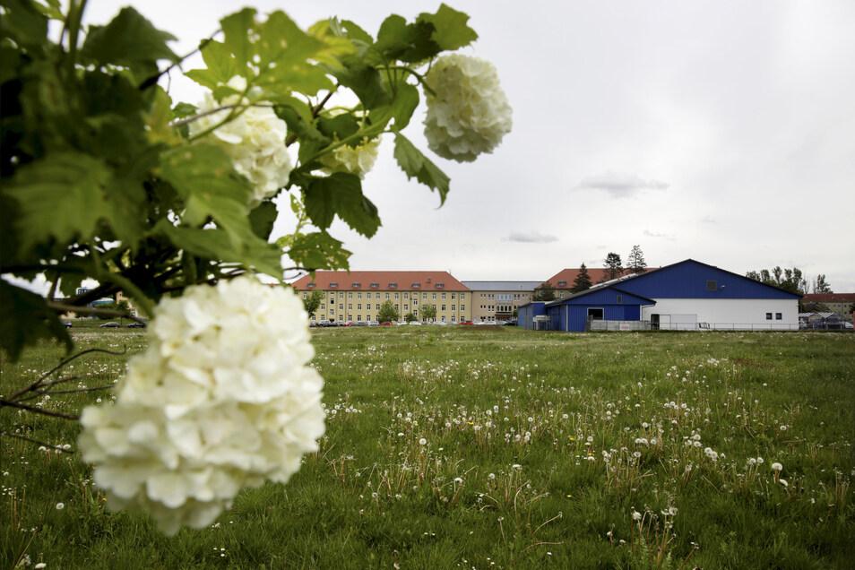 Der schlichte Zweckbau von Edeka am Behördenzentrum in Kamenz ist an Grenzen gestoßen. Jetzt hat der Betreiber eine Erweiterungsinvestition vor. Dafür würde sich die Fläche auf der grünen Wiese hinter der Halle (im Blick) eignen. Der Stadtrat hatte über e