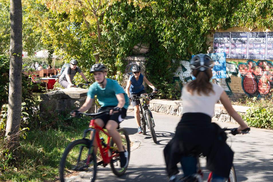 Auf dem Dresdner Elberadweg kommt es immer wieder zu Zusammenstößen zwischen Radfahrern, aber zwischen Radfahrern und Fußgängern.