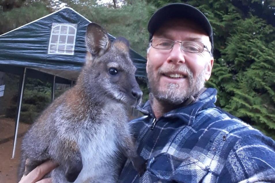 Kängurudame Gertrud, die Heiko Drechsler gern präsentiert, kann ab Freitag wieder im Tierpark Meißen bewundert werden.