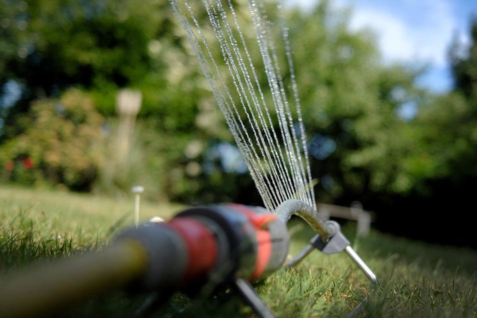 Schon vor dem Sommeranfang sind die Vorzeichen von Trockenheit und Dürre zu spüre. In ersten Gebieten ist es deswegen verboten, Wasser zur Bewässerung aus Flüssen zu entnehmen.